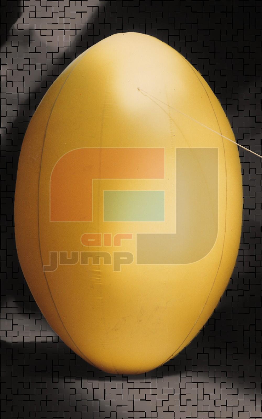 pelota de rugby 001